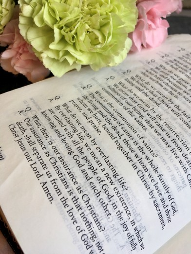 Catechism Carnations